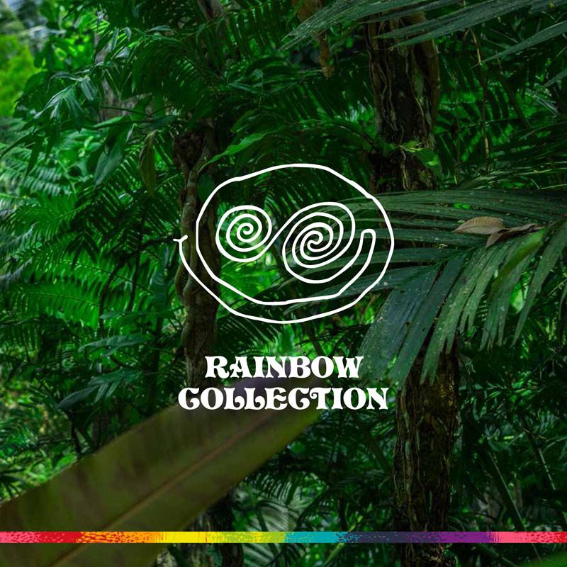 BASTL BOARDS - Rainbow Collection